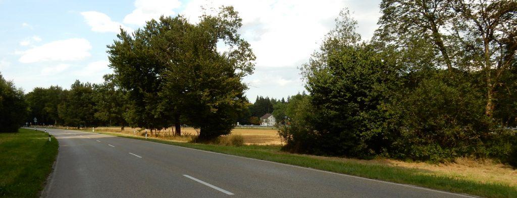 Kurze Motorrad(tages)tour im Forstenrieder Park