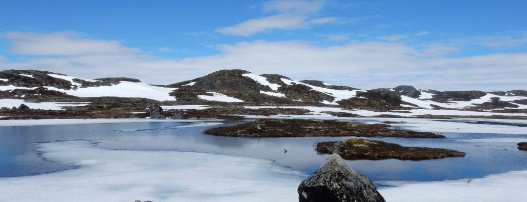 Bergen bis Gol – Quer über die Hardangervidda